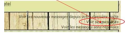 01 - Le forum : quelques astuces pour s'y retrouver Image3